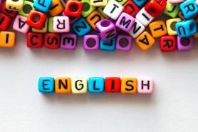 English Language Course/ Basic Level